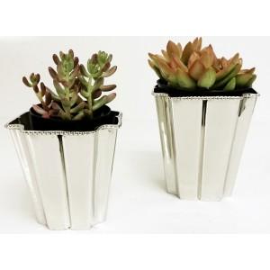 http://brass4u.com/850-2001-thickbox/planter-vase-l-non-tarnish-slvr.jpg